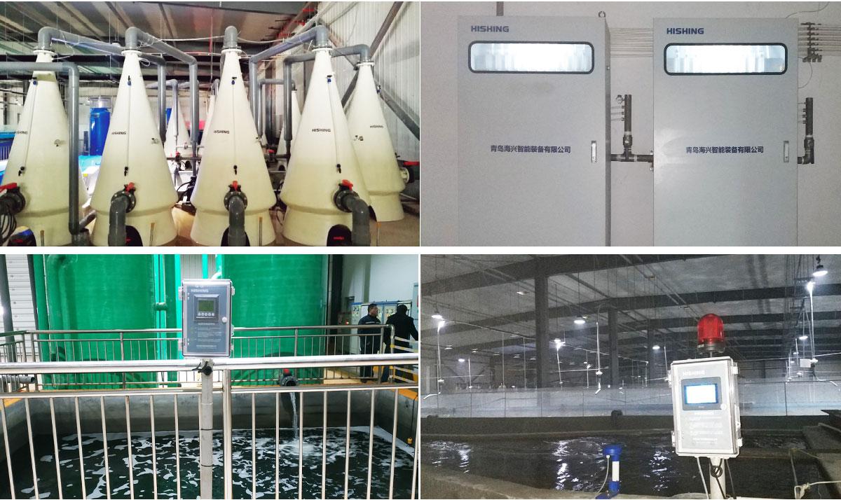Dongying Agri - Blue Horizon Acqua Tech Co.,Ltd.